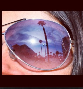 sunglass reflection, palm trees in sunglasses, sunglasses