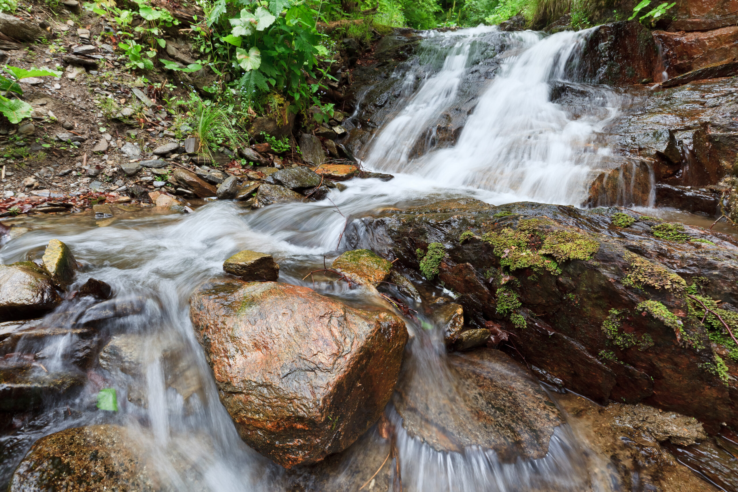 A small waterfall in a forest flows onto surrounding rocks.
